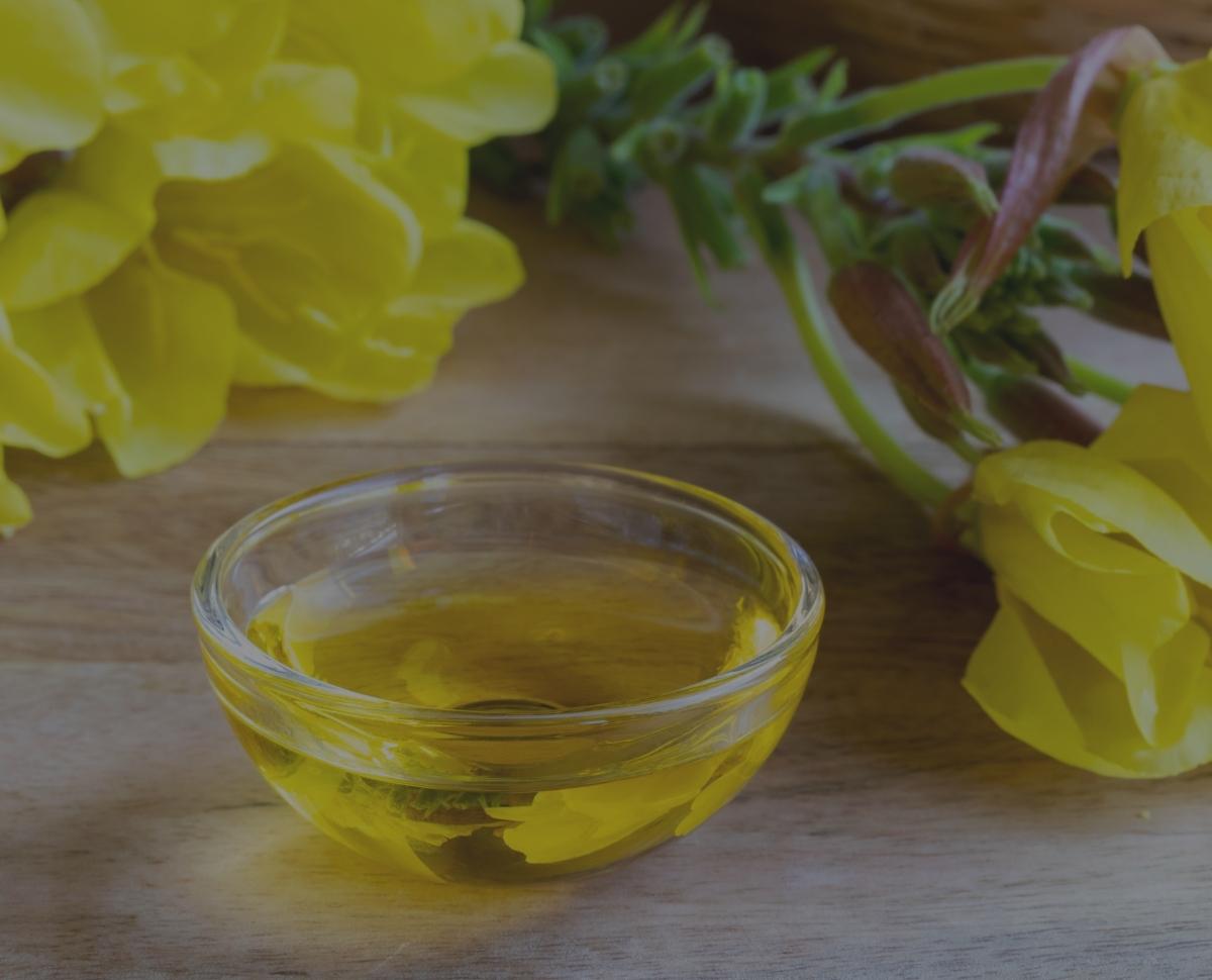 Olej z wiesiołka – czy to olej dla kobiet?